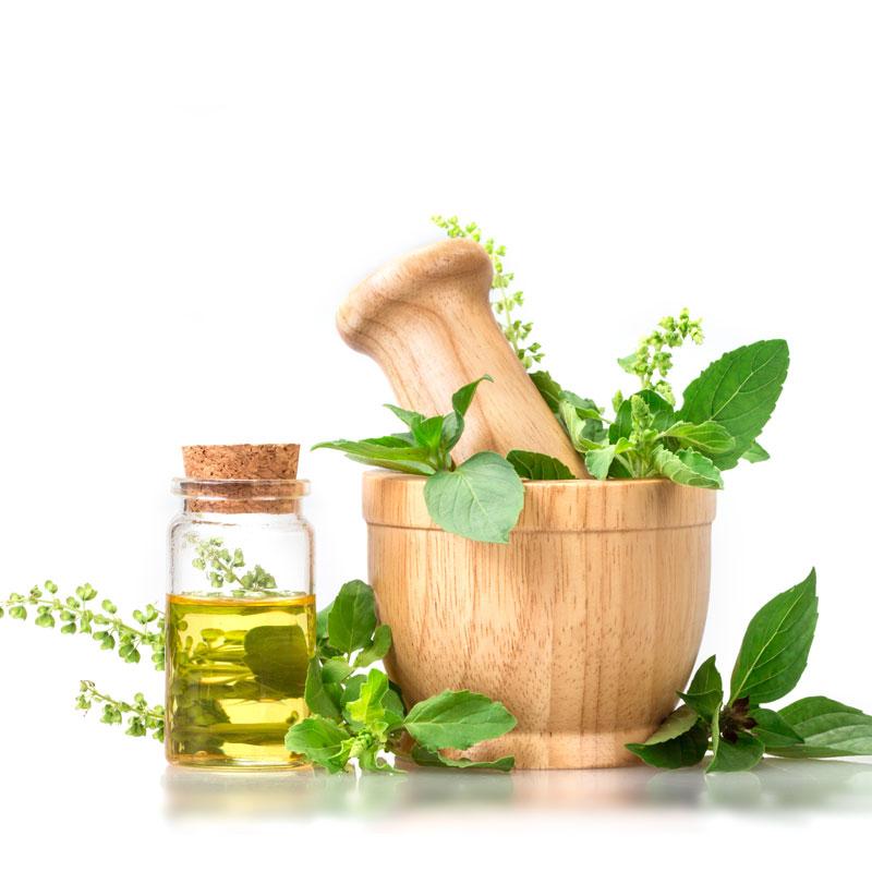 Crème nourrissante aux 6 huiles végétales biologiques